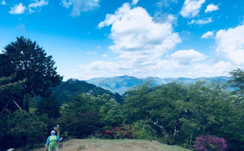 Mt.Hinode Private Trail Running Tour in Musashi-Itsukaichi