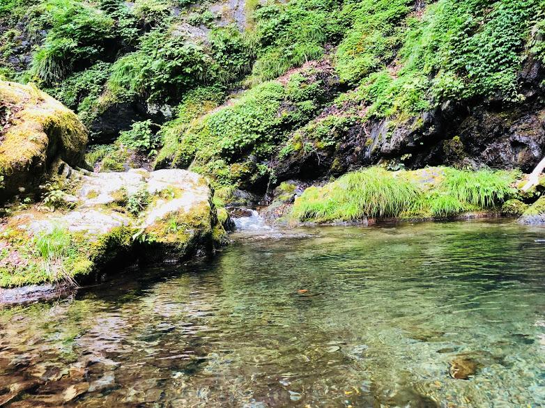 Hiking course of Mt. kawanori