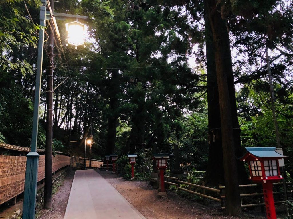 the evening of mt.takao