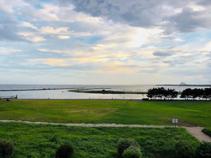 Kasai Rinkai Park Lawm squear