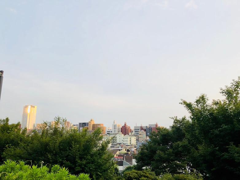 saigouyama park