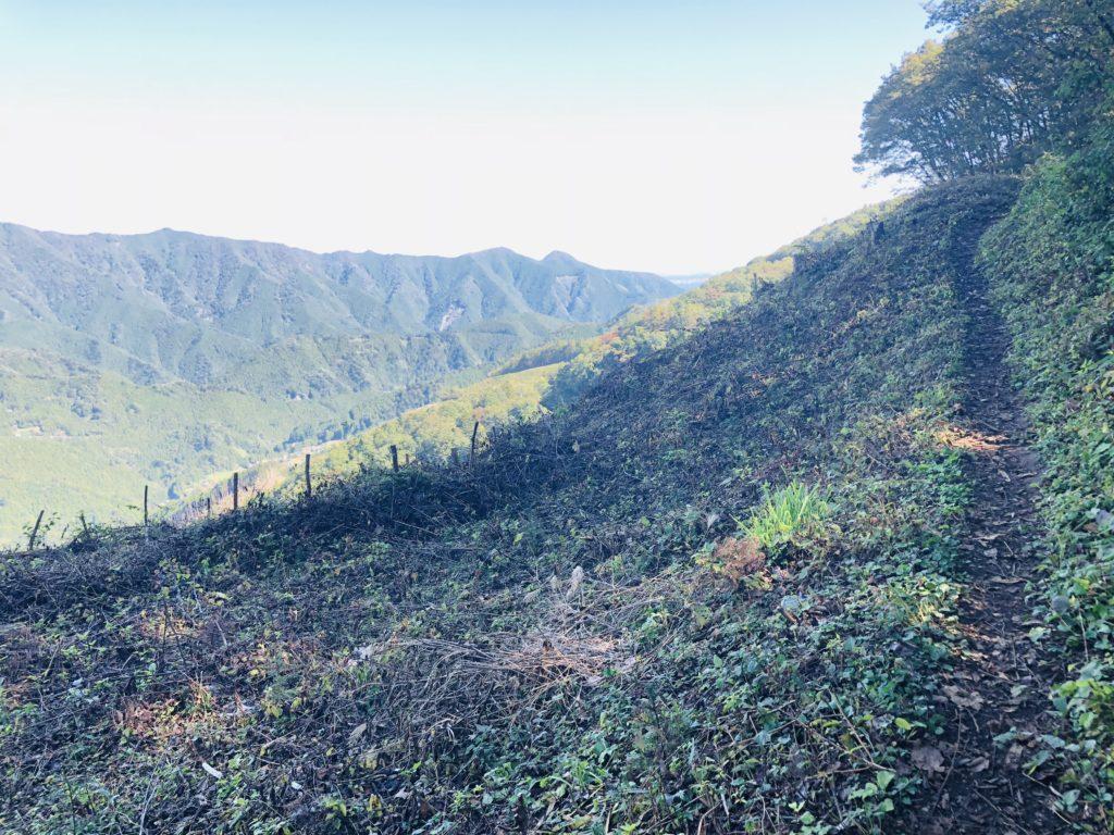 コースの名前の由来である浅間尾根がこのコースのハイライトです。