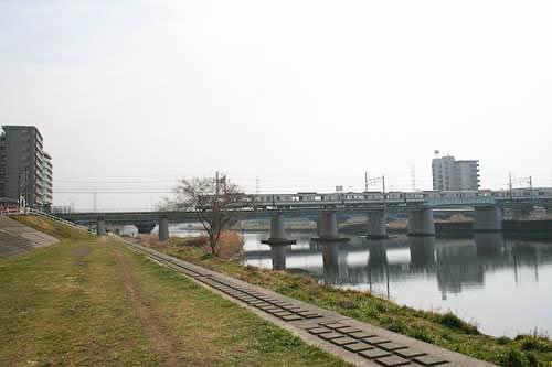 The 84th Monthly Challenge Tsurumi River Annual Half Marathon ( December 16, 2018 )
