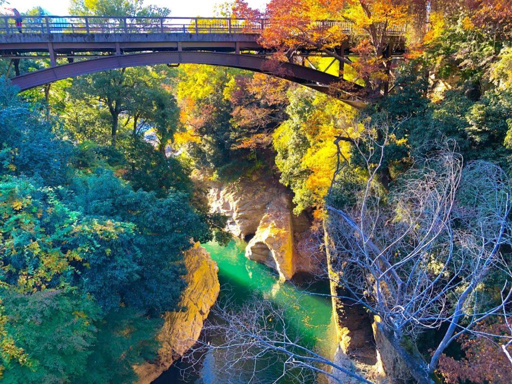 猿橋から見た紅葉の渓谷