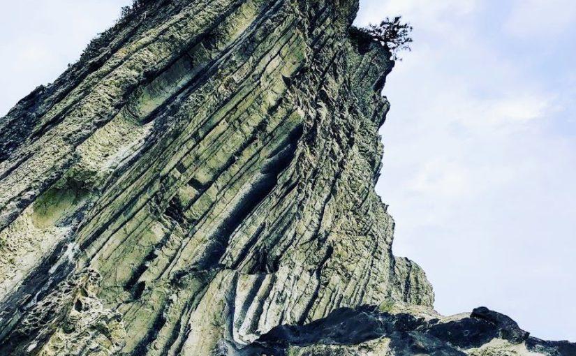 三浦岩礁のみち | 風と波が創り出したアートな岩場の海岸を歩いてマグロ丼を頂く