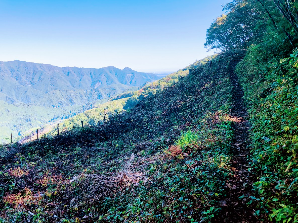 You can walk enjoying fine views of such nearby peaks as Mt.Gozen on your right side.