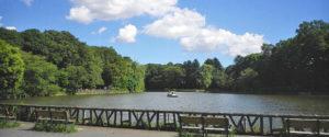 善福寺池を中心にした公園